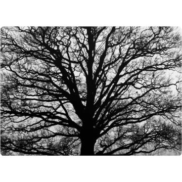 Podkładka Serenity 29x42