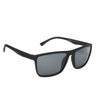 Revers Polarized 12-1