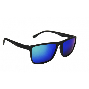 Revers Polarized 12-11